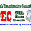 Khanewal PEC 5th Class Result 2017 by Punjab Examination Commission