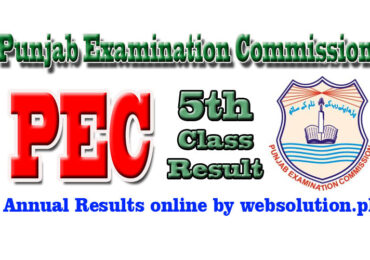 Muzaffargarh PEC 5th Class Result 2017 by Punjab Examination Commission