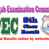 Lahore PEC 8th Class Result 2017 by Punjab Examination Commission