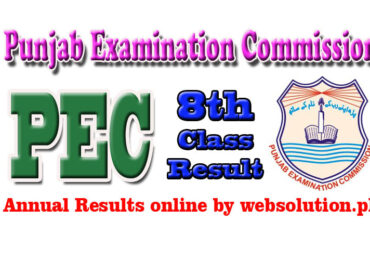 Sargodha PEC 8th Class Result 2017 by Punjab Examination Commission