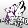 Faisalabad Wolves Going to India for Champions League t20 2013Faisalabad Wolves Going to India for Champions League t20 2013