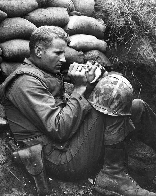 When this soldier, in the middle of life or death situations, stopped to take care of a kitty who wandered in the area