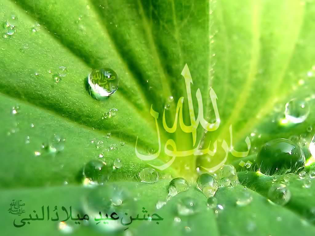 Beautiful SMS Collection of 12 Rabi ul Awwal 2014