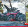 Paul Walker Died in Car Accident