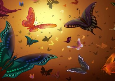 Beautiful Collection of 3D HD Nature Scene Wallpapers (3)