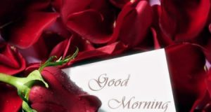Latest and Beautiful Collection of Romantic Good Morning SMS