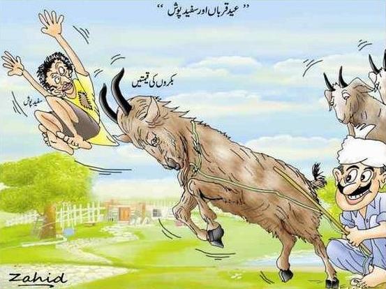 Cartoon bakra wallpapers, funny bakra eid wallpapers