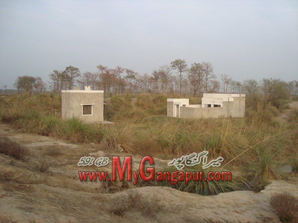 Bamba Photos of Gangapur