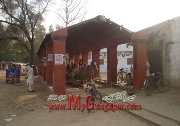 Gangaprur ANOKHI SAWARI or GHORA TROLLY