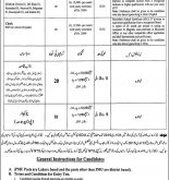 Punjab Literacy Movement Project PMU Jobs 2015 NTS test result