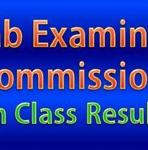 8th Class Result 2015 All PEC Online Result