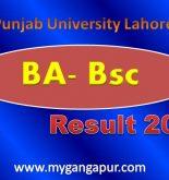 Punjab University Lahore PU Results 2015