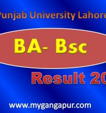 Punjab University Lahore PU Results 2015