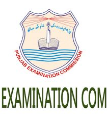 PEC 8th Class Result 2018 Faisalabad Board by Roll Number Check