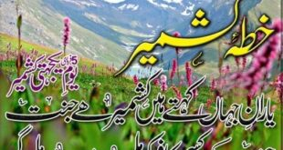 Hd Wallpaper Kashmir Day 5 February 2016 (2)