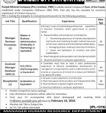 ONline Govt of Punjab Mineral Company Jobs February 2016