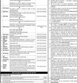 Educators Jobs 2016 in Punjab