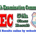 PEC Punjab Examination Commission Results