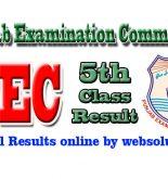 PEC Punjab Examination Commission Results