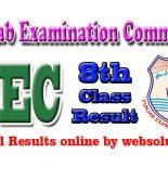 PEC 8th Class Result www.pec.edu.pk