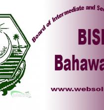 Bise Bahawalpur logo