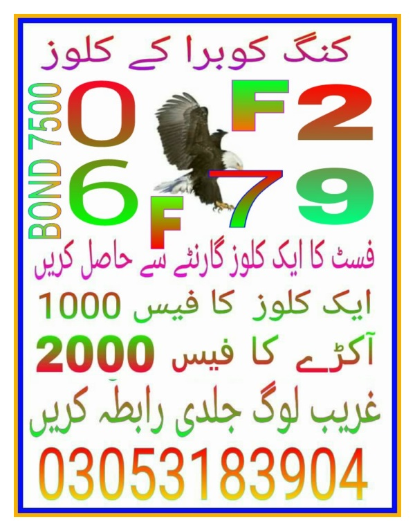 7500 prize bond guess paper February 2018 Peshawar (1)