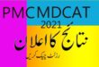pmc mdcat result 2021
